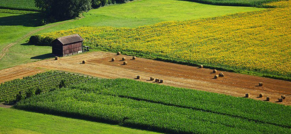 Nièvre: comparez les locations vacances - Nièvre -