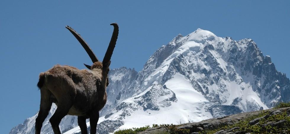 Haute-Savoie: séjours à l'hôtel jusqu'à -20% - Haute-Savoie -