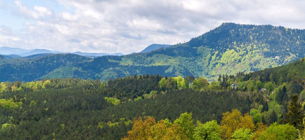 Vosges: séjours à l'hôtel jusqu'à -20% - Vosges -