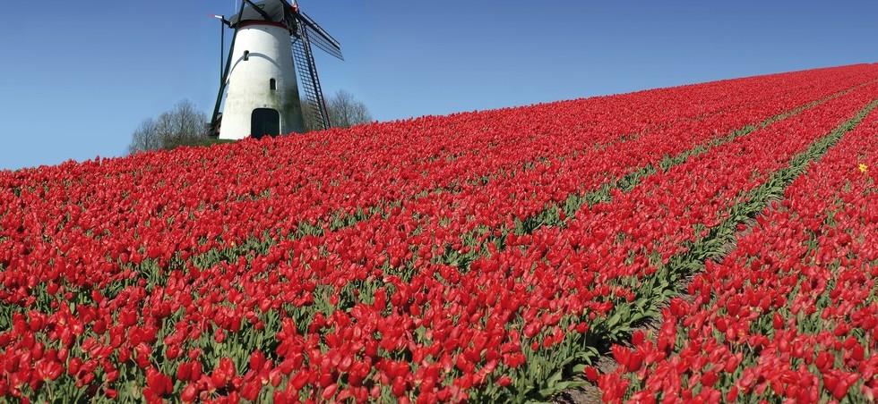 Activités, loisirs et transports Pays-Bas - Pays-Bas -